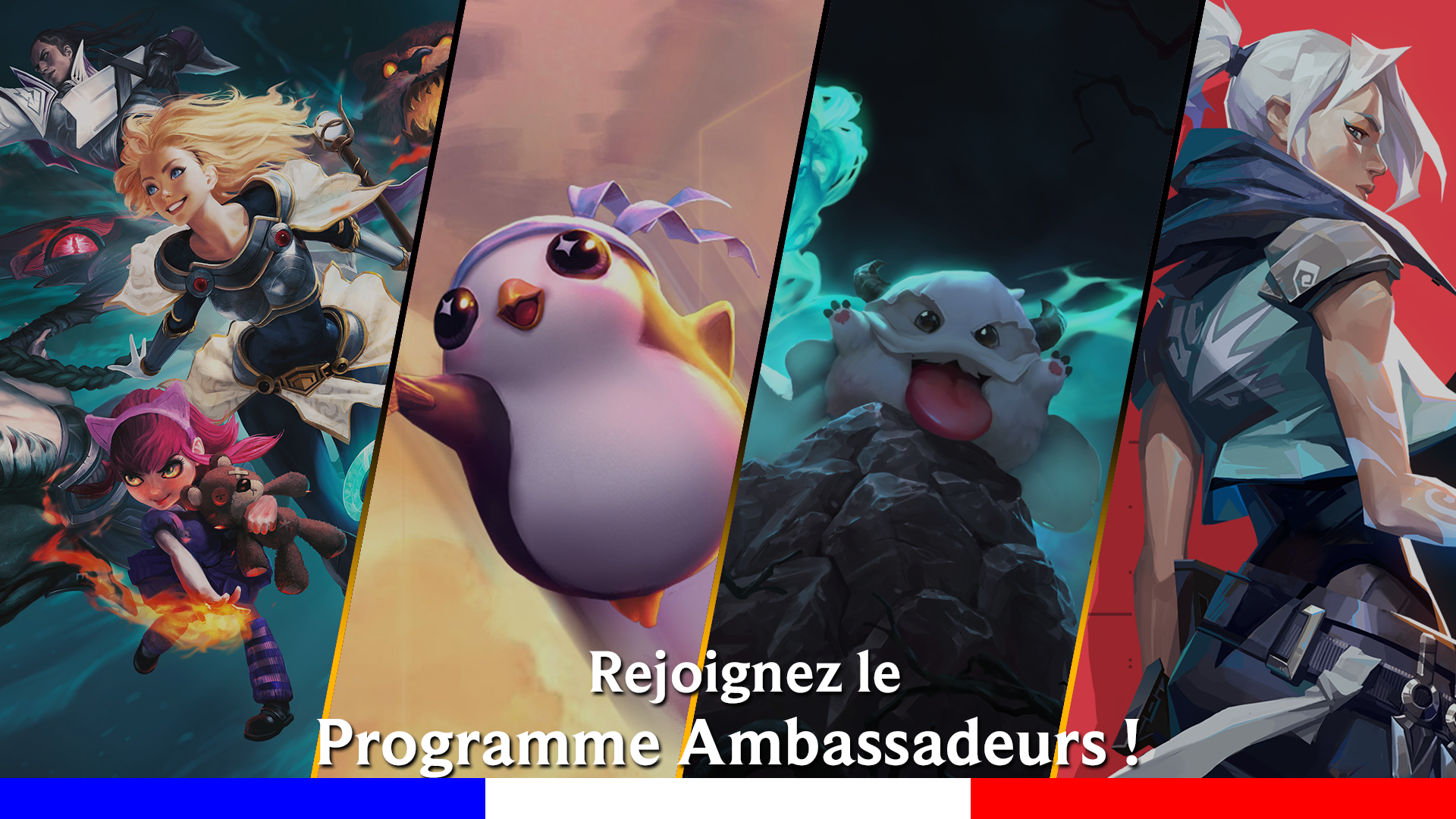Programme ambassadeur riot games