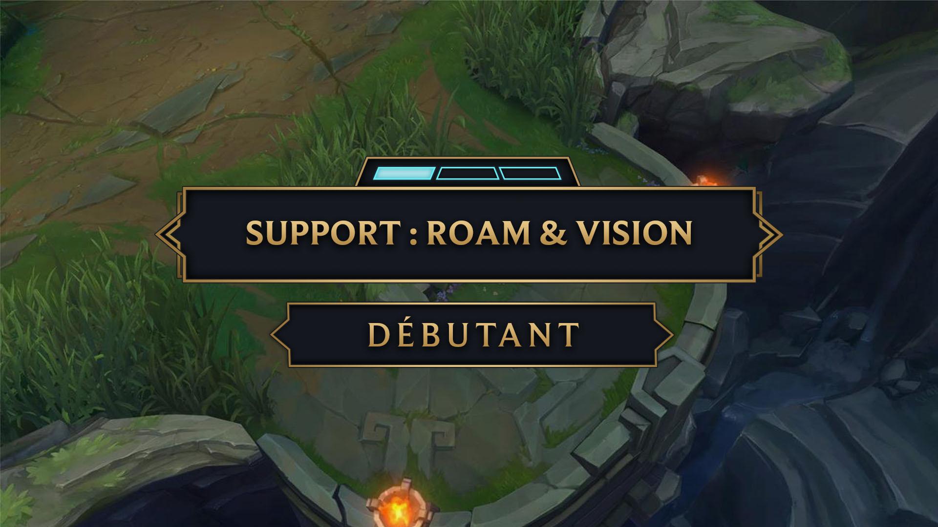 Vignette support roam vision