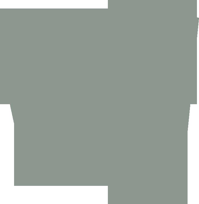 Logo riot grey